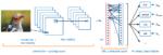 Come funziona una rete neurale CNN (convolutional Neural Network)