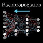 Cosa è la Back Propagation dell'errore